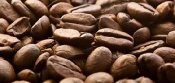 Coffee price rebounds 10pc on high quality central Kenya beans